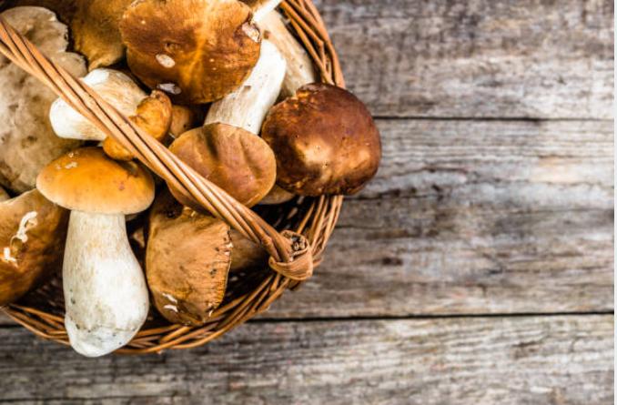 Salumi e funghi porcini, tre ricette autunnali speciali